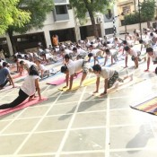 International Yoga Day (NAVRANGPURA)