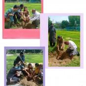 Go green, plant trees...  Let the new generation prosper….